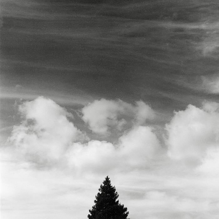 Untitled (Berkeley, 2010) © Sheila Newbery