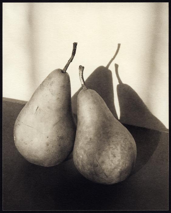 Pairs, palladium print (2011/2012) © Sheila Newbery