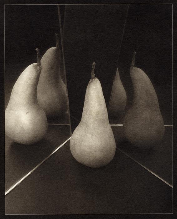 Boscs, palladium print, (Berkeley, 2012) © Sheila Newbery