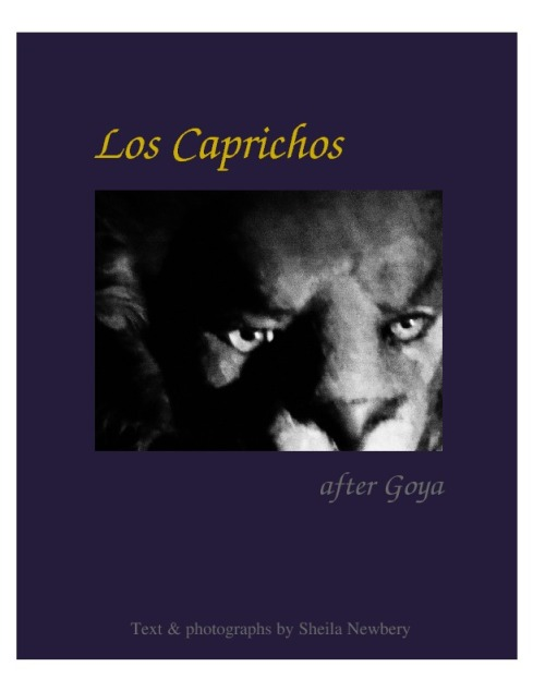 Cover idea for *Los Caprichos*